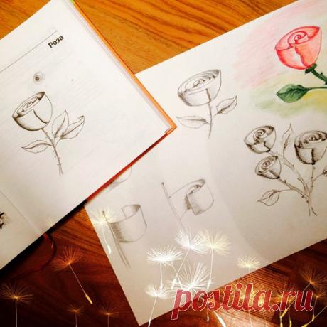 Как нарисовать цветы. Два простых мастер-класса   Блог издательства «Манн, Иванов и Фербер»
