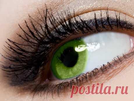 Зеленые глаза: энергетика, характер ицвета, приносящие удачу Вомногомто, какие мыесть, определяет цвет наших глаз. Поцвету глаз можно определить характер человека или понять его намерения. Если увас зеленые глаза, то вам полезно будет узнать, как привлечь больше удачи, усилить свою энергетику.