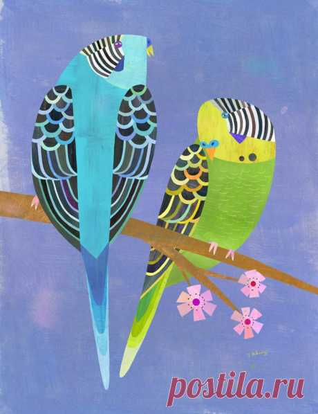 Parakeet Pair Bird art print for kids or adults. Available | Etsy