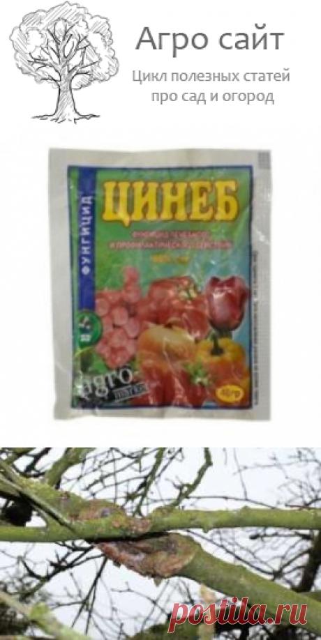Цинеб фунгицид от грибковых болезней растений