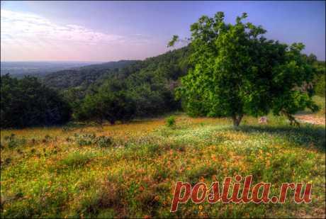 Природа штата Оклахома | Энциклопедия США
