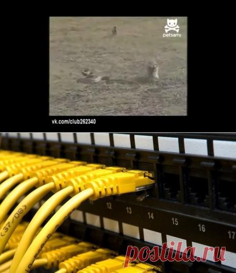 Уходим от слежки на компьютере, или как заметать следы