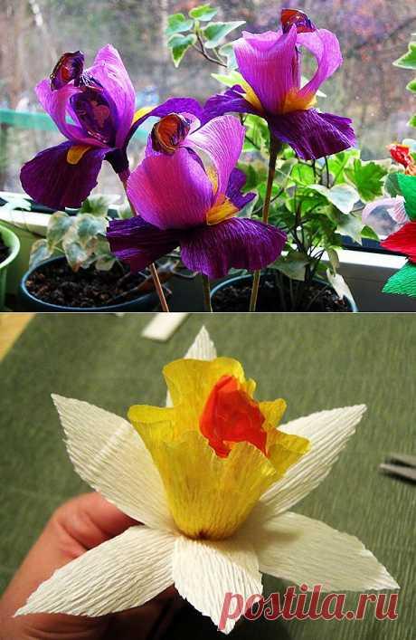 Конфетные цветы из гофрированной бумаги. Мастер-класс.