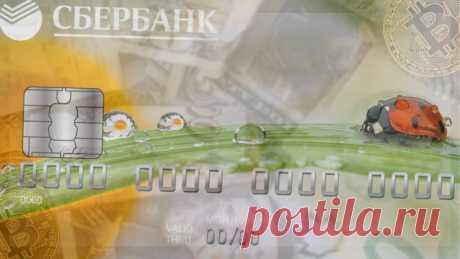 Почему я считаю, что Сбербанк-это не только банк, но и надёжный бизнес, в который инвестирую | БогатаяЯ | Яндекс Дзен