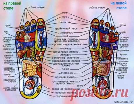 Волшебный самомассаж для сосудов ног от Галины Монастырёвой
