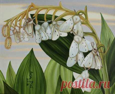 Лиза Рэй –  Порхающий ландыш Lisa Ray - Fluttering lily of the valley 50Х40, 2018 canvas, oil  - холст, масло #surreal #surrealism #超現實主義 #surréalisme #painting #LisaRay #сюрреализм #ЛизаРэй #живопись #картины #художник #art #искусство #весна #цветы #ландыш #бабочки #порхающие #fluttering #spring #butterflies #lilyofthevalley #flowers #diaphoramendica