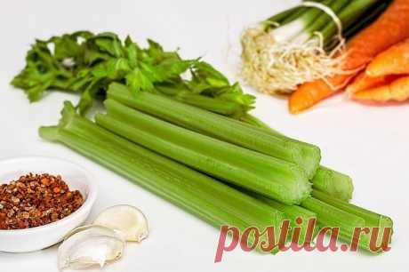 """Чудо-суп, который очистит организм за неделю   Журнал """"JK"""" Джей Кей Боннский суп — главное блюдо одноименной диеты, разработанной бельгийскими диетологами. Секрет его действия заключается в уникальной комбинации ингредиентов, каждый из которых помогает очистить организм, хорошо насытить и улучшить метаболизм. Главная роль в блюде отведена, конечно же, сельдерею — спасительному овощу для всех худеющих."""