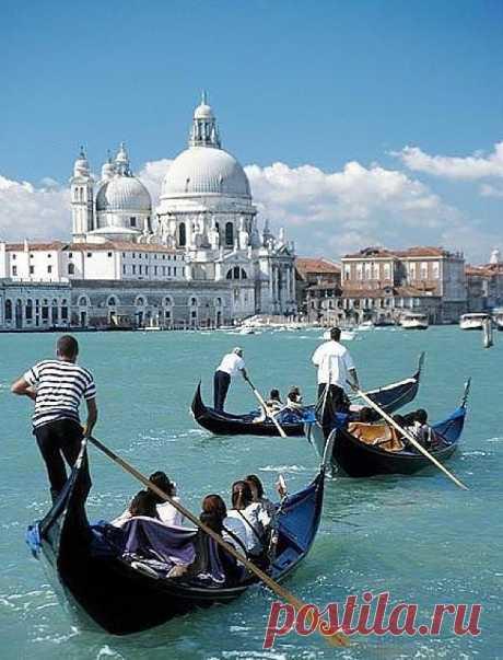 А вы знаете, что в Венеции определённое число гондольеров, и это число не меняется вне зависимости от выхода на пенсию и/или прибытия новых членов. Их постоянно 425. Венеция, Италия
