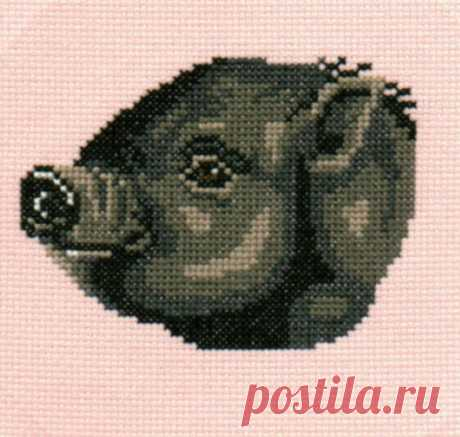 Pot Belly Pig counted cross-stitch chart   Etsy