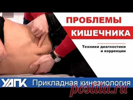 Техника работы с тонким кишечником (М.Савиных) - YouTube