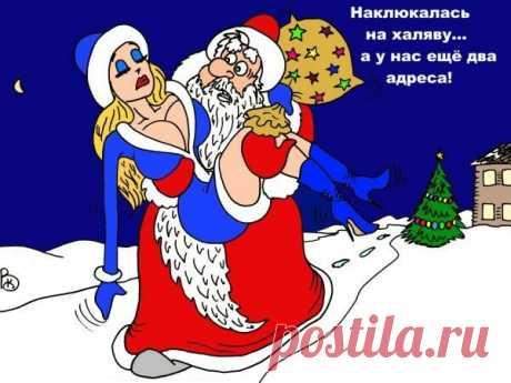 «1 января девушка пришла домой утром. Мать строго спрашивает её: – С кем ты всю ночь шлялась? – С Дедом Морозом, – недовольно отвечает дочь. – Как тебе не стыдно, – шататься со старым мужчиной?! Неизвестно, что от них можно ожидать… – К сожалению, ничего кроме конфет, мама» — карточка пользователя yasha.shshshsh в Яндекс.Коллекциях