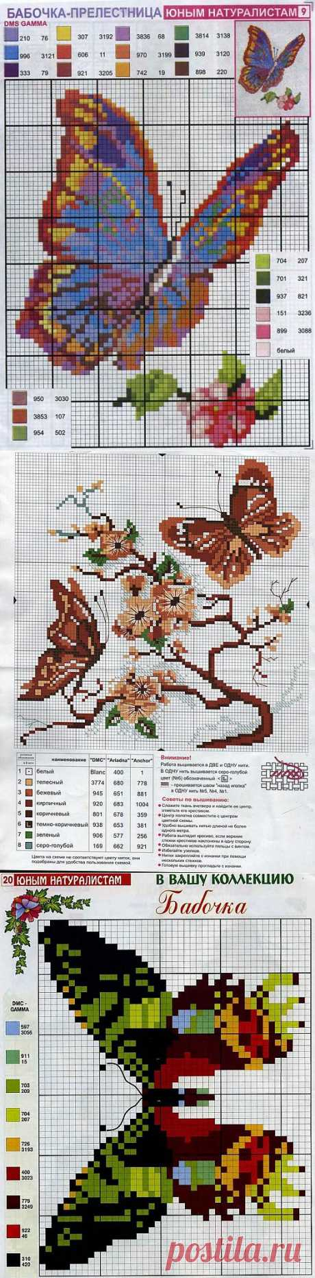 Schemes of an embroidery of butterflies of the cross \/ Scheme of an embroidery cross \/ PassionForum - master classes in needlework