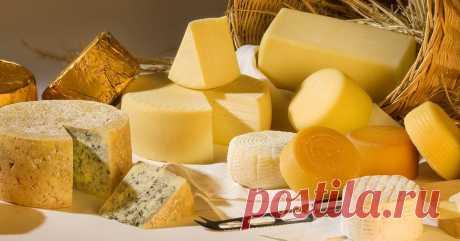 Советы сырного дегустатора: как правильно хранить сыр » Новости Украины. Последние новости дня || Вести-UA