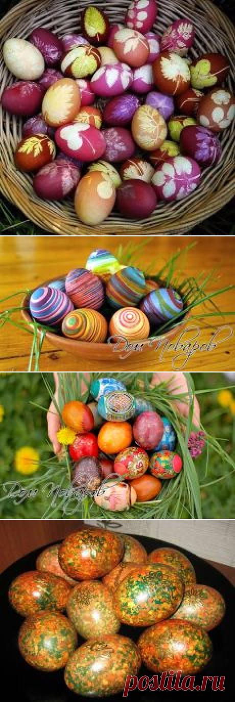 Поиск на Постиле: красим яйца