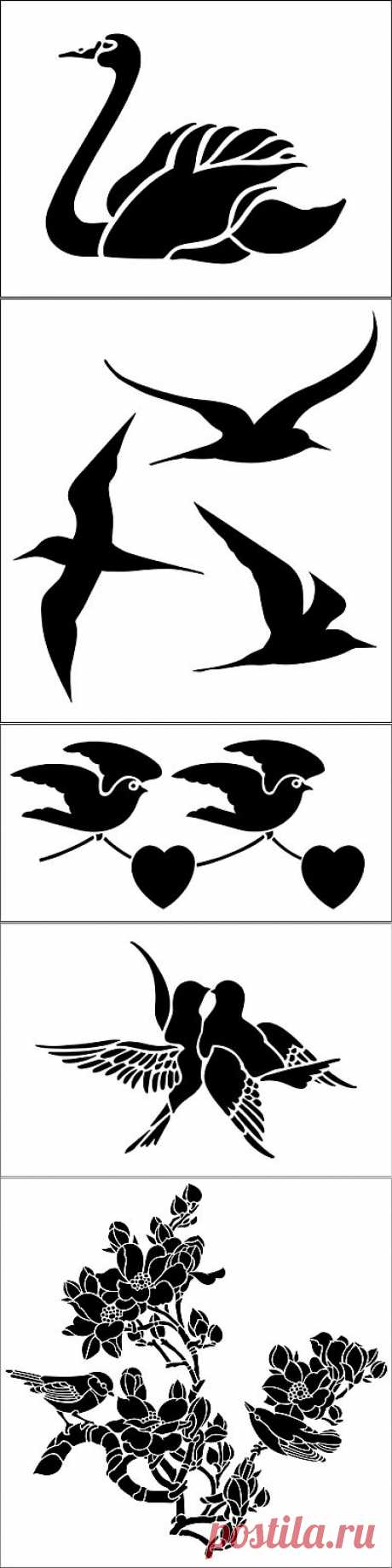 Cliches - birds.