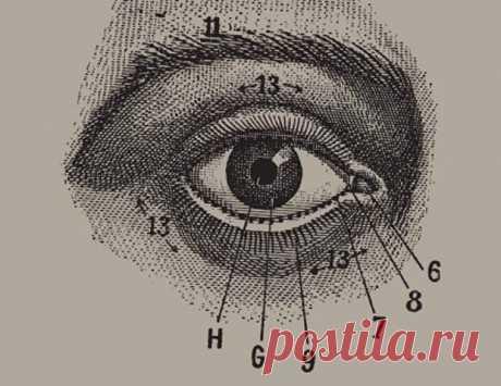 """Отличная профилактика глаукомы и катаракты. - Познавательный сайт ,,1000 мелочей"""" - медиаплатформа МирТесен Массаж глаз прекрасно восстанавливает зрение, может быть использован для профилактики глаукомы и катаракты, усиливает кровообращение, улучшает обмен веществ в тканях глаз, а также близлежащих тканях, укрепляет мускулатуру глаз. При массаже глаз и при выполнении упражнений вы встретитесь с"""
