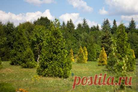 Галицкий национальный природный парк создан в соответствии с указом президента Украины от 9 августа 2004 года