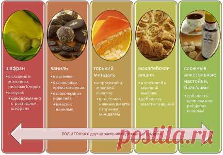 Название: Кумарин - что это: в каких продуктах содержится, вред и польза кумарина для  организма Найдено в Google. Источник: ptoday.ru