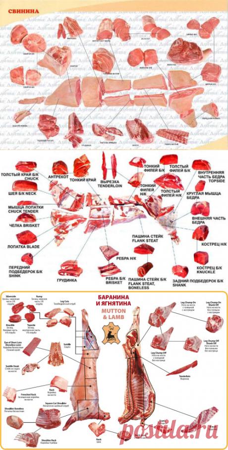 Кулинарная школа онлайн: как правильно выбрать мясо / Меню недели