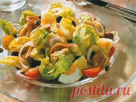 Салат нисуаз предназначен для разогрева вкусовых желаний у человека для перехода ко второму блюду. В салате используются все известные человеку пищевые продукты и их самые смелые сочетания. Салату соответствует своя оригинальная заправка