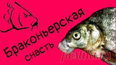 Браконьерская снасть 2020!!!!ТОТ САМЫЙ СЕКРЕТ ВОЛШЕБНОЙ СНАСТИ ! Как быстро наловить рыбы