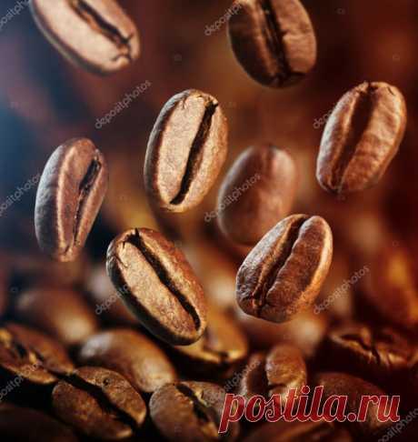 Классификация кофейного зерна