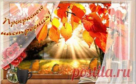 """Осень картинки   Осень – таинственное и красивое время года! Это прекрасная пора, всё вокруг окрашивается в жёлтые и красные краски. Не зря её называют """"Золотой"""", ведь осень действительно приобретает золотистые оттенки и это очень красиво. Осень в основном холодная и дождливая, но это не повод расстраиваться, ведь именно в такие холодные и дождливые вечера в наши головы приходит очень много разных мыслей, мы задумываемся над вещами, которые действительно нас волнуют. Но та..."""