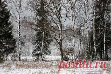 Пейзаж. Природа, ч.14 – Блог. Run, пользователь Марина Николаева   Группы Мой Мир