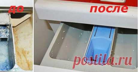 После этого средства стиральная машинка станет как новая | Sesdiv | Яндекс Дзен