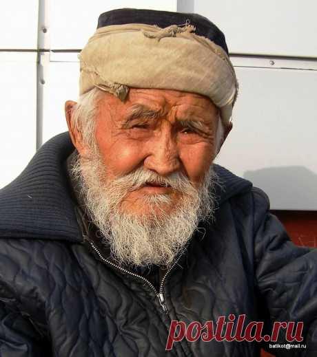 мудрость — это привилегия старости
