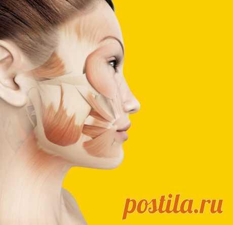 Маски для лица, которые заменят салонные процедуры Витамины – это не только залог здоровья, но и красота кожи. При их нехватке организм реагирует тусклым цветом лица, высыпаниями на нем, шелушениями и воспалениями. Особенно это характерно при авитаминозе в межсезонные периоды.