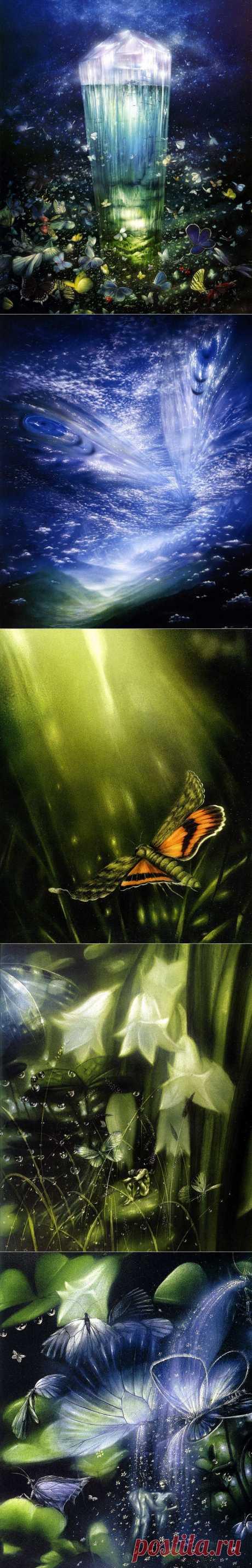 Блоги@Mail.Ru: Friedrich Hechelmanns. «100 бабочек я дарю тебе».