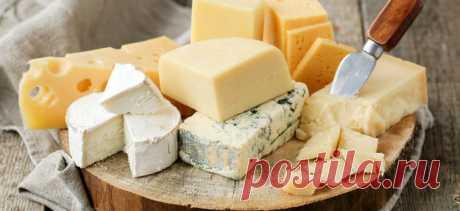 Сыроварение как бизнес в домашних условиях: как организовать сыроварню, рецепты, оборудование, отзывы