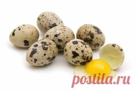МАСКИ-Перепелиные яйца спасут кожу от старости