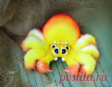 Солнечный паук