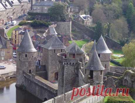 Фужер – замок папоротников.