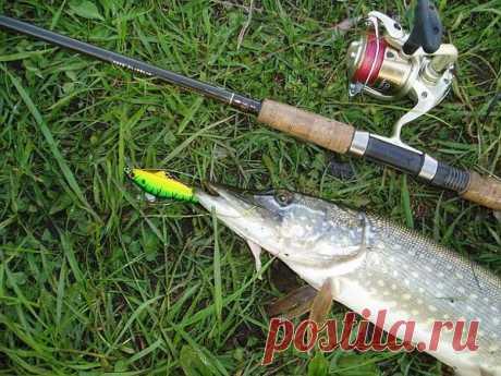 Los nombres de las pescas al lanzado para la caza del lucio
