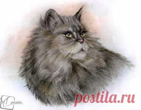 Рисуем роскошную кошку