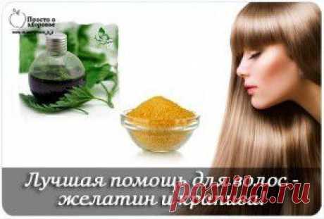Лучшая помощь для волос — желатин и крапива!   Женский мир