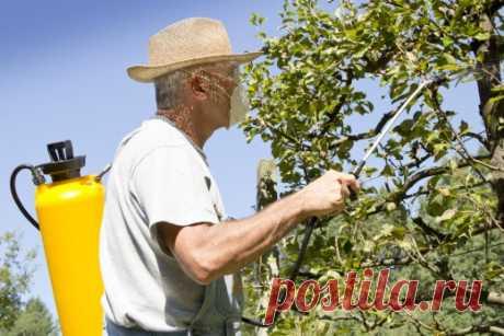 El tratamiento primaveral del huerto de los saboteadores
