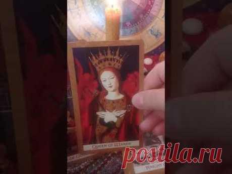 Обзор колоды Золотое Таро (Golden Tarot by Kat Black) - YouTube