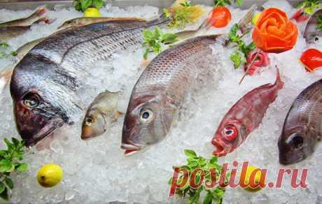 Что надо знать о замороженной рыбе, прежде чем купить ее в магазине Выбрать хорошую рыбу в морозильной камере супермаркета – непростая задача. Замороженная рыба – продукт загадочный. Этой рыбе не заглянянешь с глаза, не проведешь даже самый простой тест на свежесть, р…