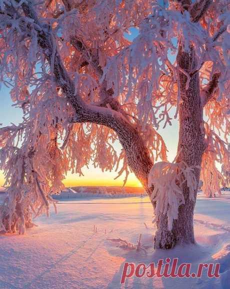 Прощай, Зима!  Спасибо за снежинки,  За лёд хрустальный, вьюги и мороз,   За зимние чудесные картинки,  Что подарил с любовью Дед Мороз.  Прощай, Зима! Тебя мы не забудем,  И будем ждать, как ждут всегда друзей.  Зима-красавица, тебя мы очень любим,  И через год мы встретимся, поверь!