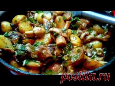 Как приготовить грибы с картошкой в сметане?
