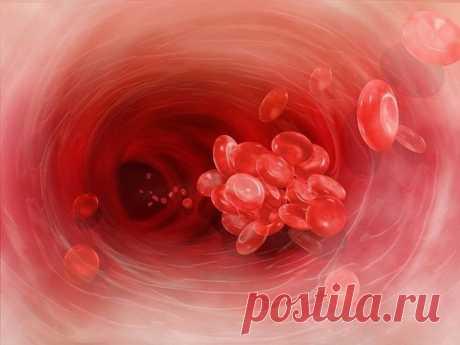 Чем опасна густая кровь? И что надо делать?