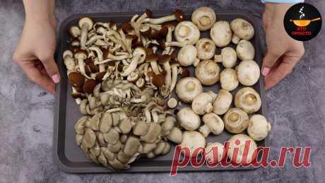 В последнее время стала чаще покупать грибы, причём разные и много: показываю, что я с ними делаю | Евгения Полевская | Это просто | Яндекс Дзен