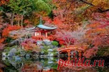 """Сегодня 23 сентября отмечается """"День осеннего равноденствия в Японии"""""""