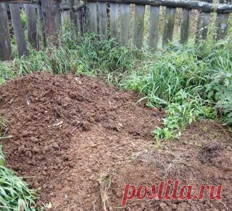 Не верила, пока не попробовала. Закладываем компост сейчас - к весне он уже готов | На грядке | Яндекс Дзен