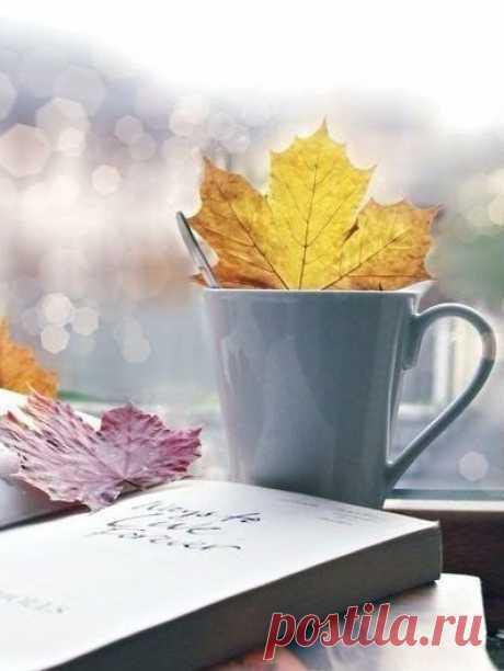 Записки из Осени