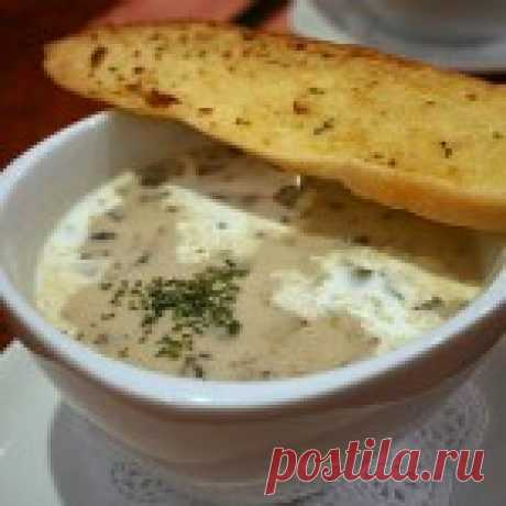 Как приготовить грибной суп с плавленым сыром и курицей. Суп – одно из непременных блюд во многих национальных кухнях мира. Каждая страна имеет свои традиции приготовления супов. Норвегия славится знаменитым супом из семги и сливок; Франция может гордиться своим блистательным луковым супом, который покорил сердца многих гурманов мира; совершенно иные супы характерны для китайской и японской кухни и т.д. Список можно продолжать долго, но одно ясно, что без супа сложно предс...